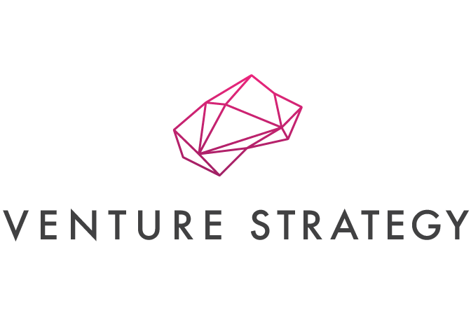 Venture Strategy