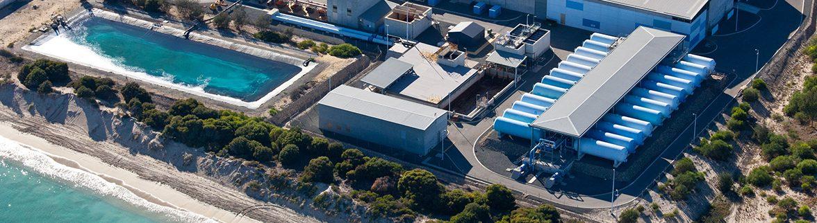 Aroona Plant Perth