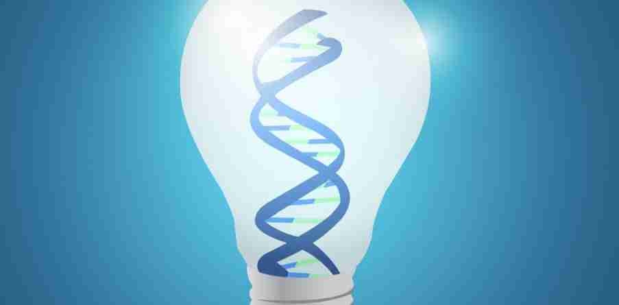 The Secret Way to Build Innovation Into Your Organisation's DNA